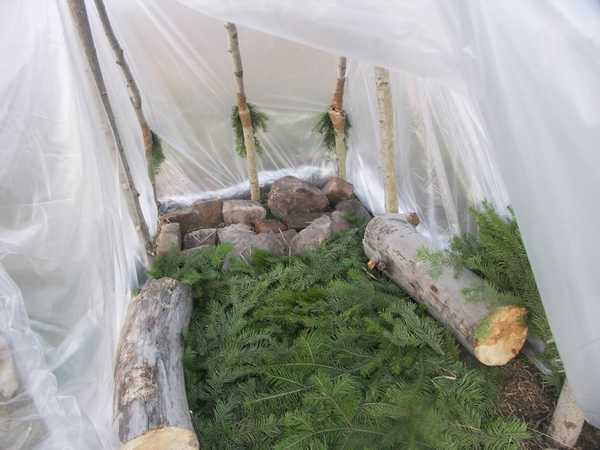 На фото: утепление лапником и сиденья из бревен