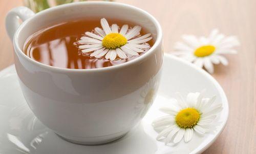 Напиток на основе ромашки аптечной – самое оптимальное питье в сауне