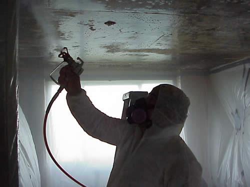 Специальное распылительное оборудование позволяет быстрее провести обработку поверхности.