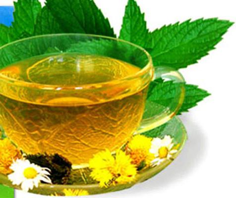 Употребление зеленого чая благотворно влияет на организм человека после банных процедур
