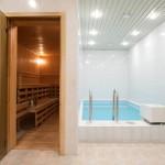 Sauna and mini pool