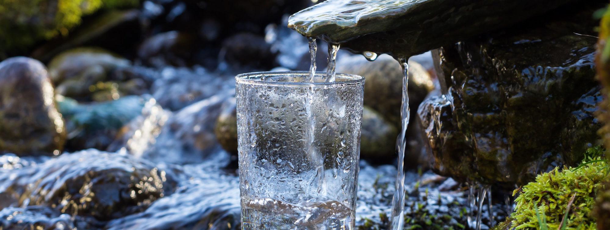 Для закваски нужна дождевая или речная вода