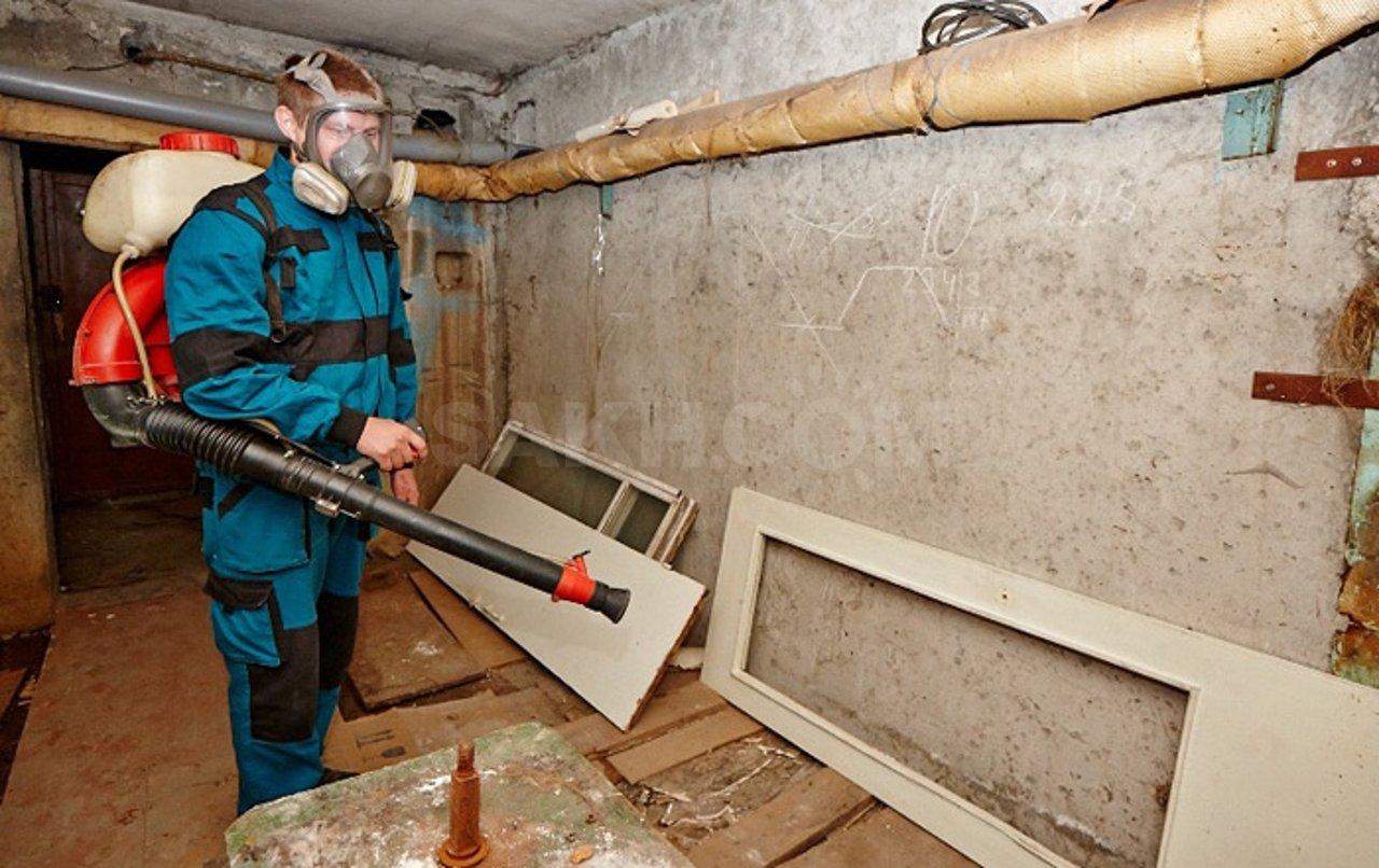 Перед хранением помещение нужно обработать раствором хлорной извести