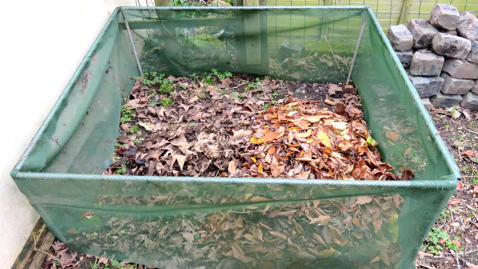 Опавшие листья могут пролежать до 2-х лет, чтобы из него получился качественный перегной