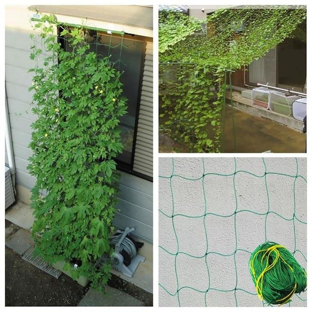 Сетка из нейлона для плетущихся растений