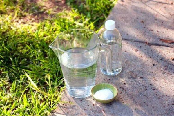 Раствор из уксуса, соли и воды
