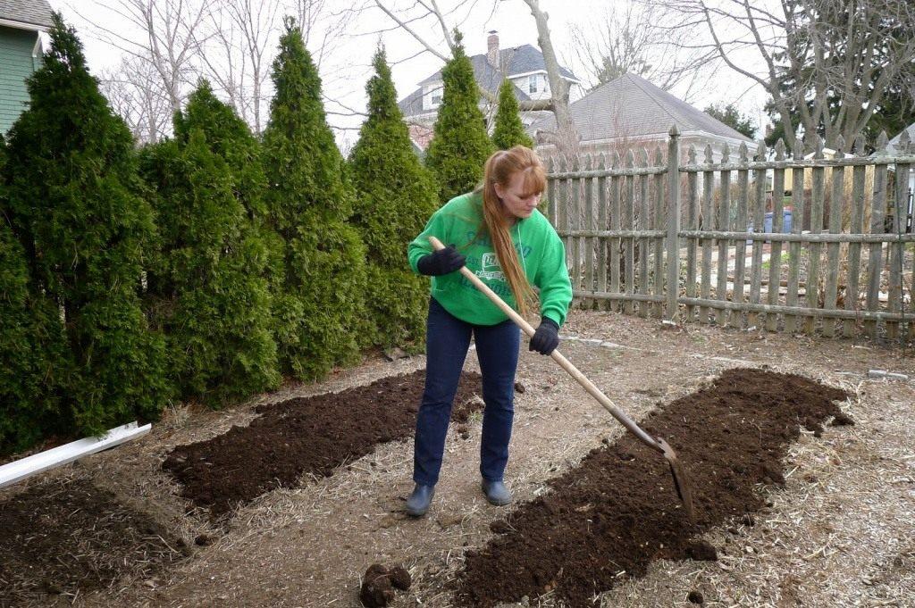 Перекапывание огорода каждый год отбирает много сил и времени