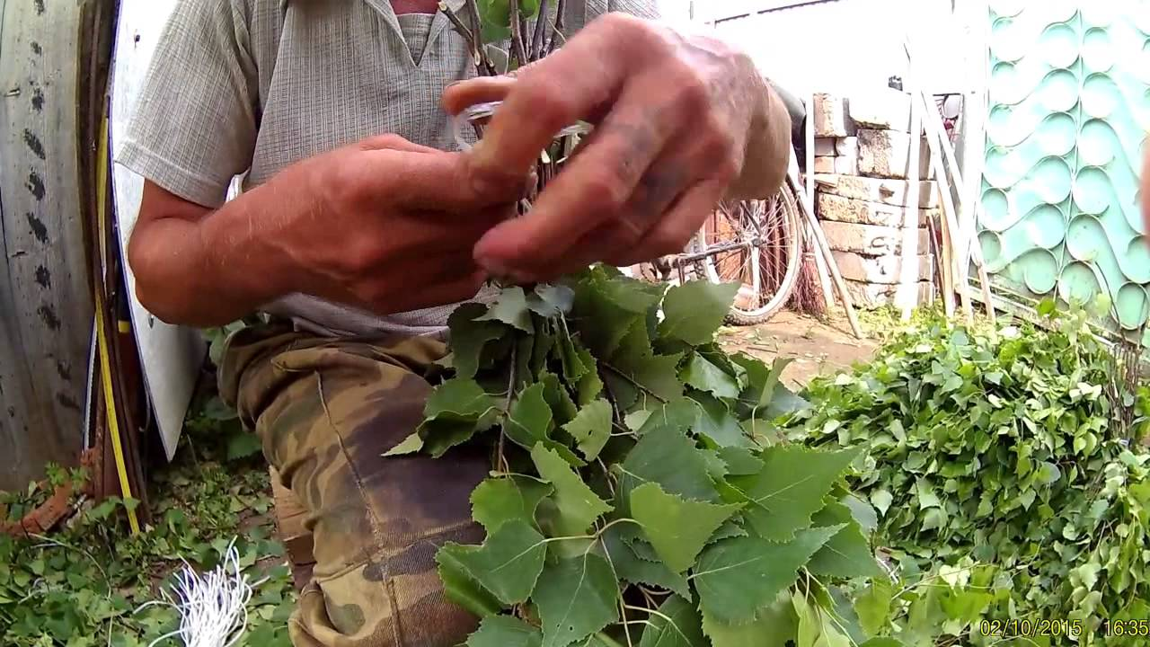 Сборка березового веника