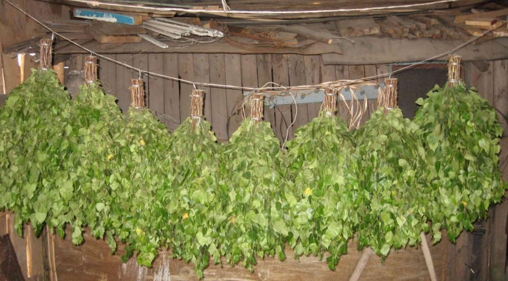Веники хранятся в сухом помещении