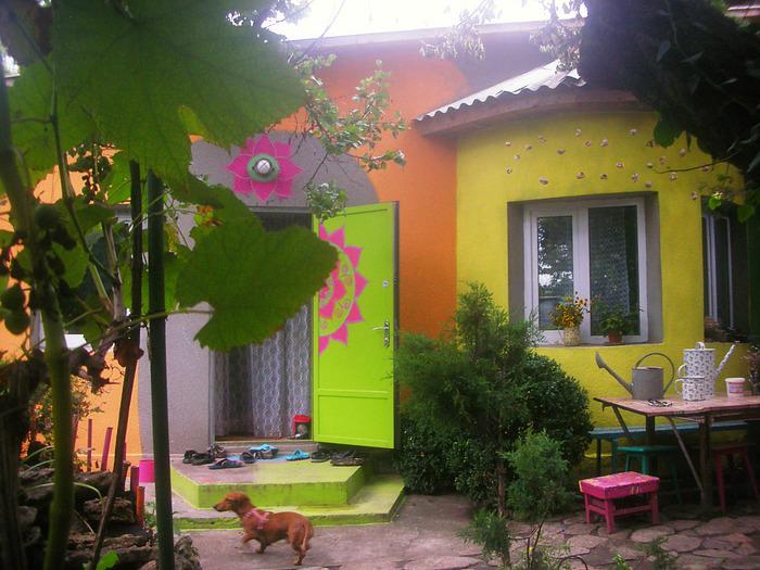 Дом на даче после покраски