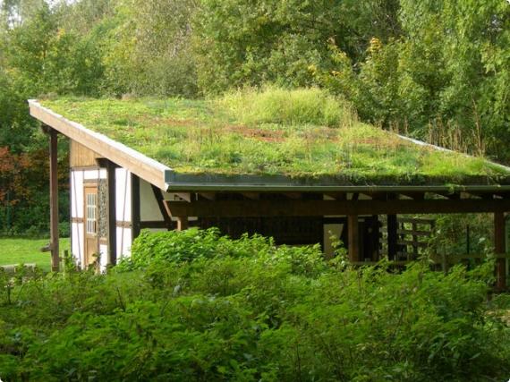 На фото хорошо виден наклон бани с плоской крышей.