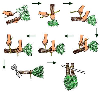 Схематическое изображение этапов сборки